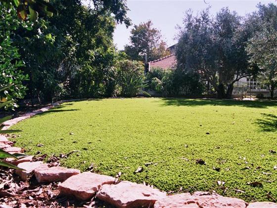 דשא סינטטי איכותי | התמונות באדיבות דשא עוז